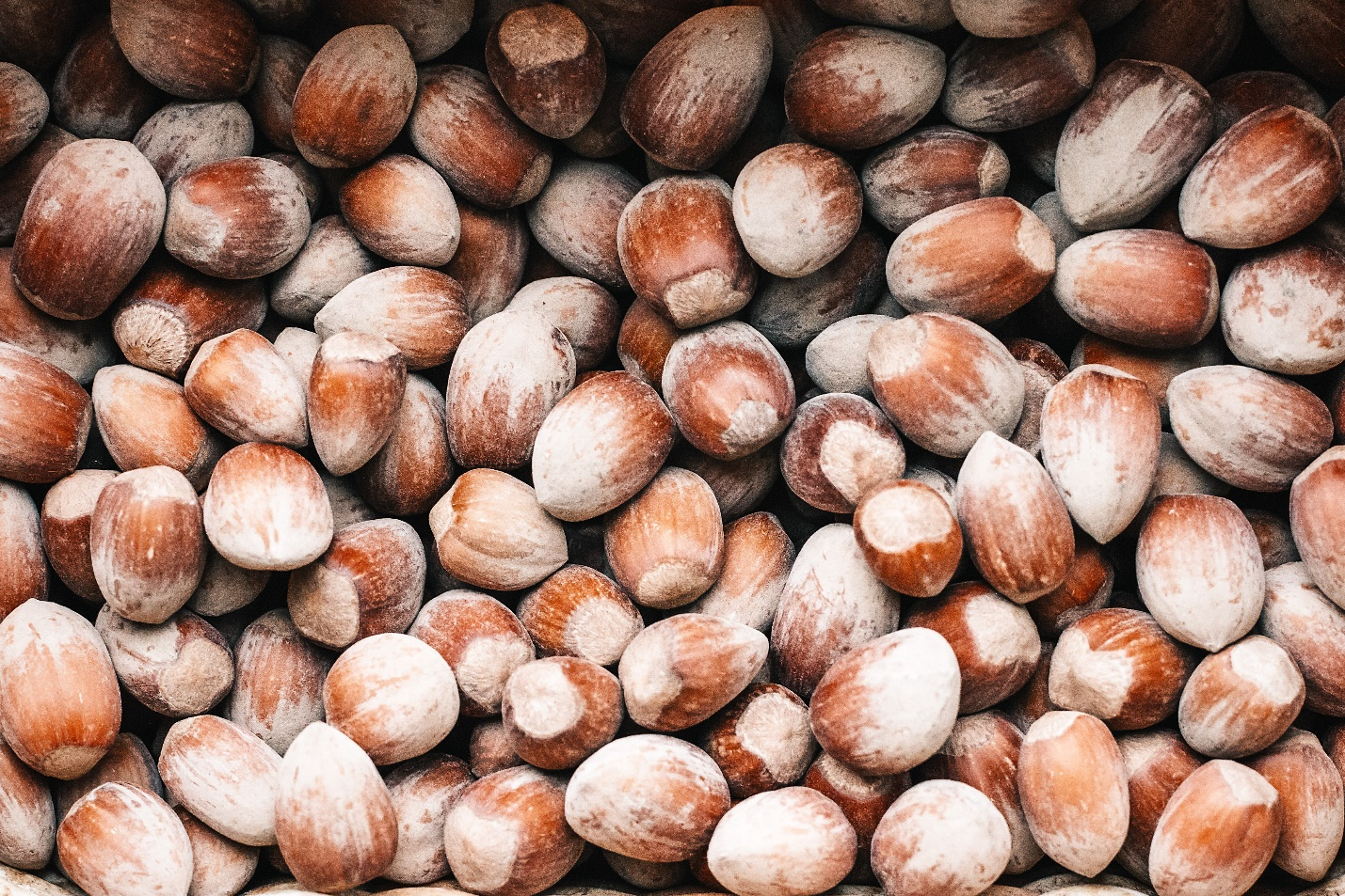 The Benefits of Nuts For Men And Women: 5 Unexpected Facts 4