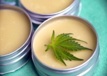 Do CBD Creams Work? Are They Safe For Your Skin?