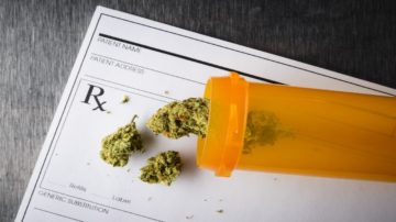 Why Is Marijuana Used As A Medicinal Solution?
