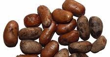 9 Interesting Health Benefits of Ehuru Seeds
